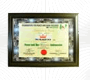 Peace Ambassador 2011 – Foundation for Peace & Non-Violence in Nigeria